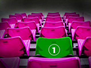 Many magenta and green 1st seat, winner concept.