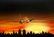 Flugzeu, Landeanflug bei Sonnenuntergang