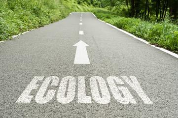 concept route écologie