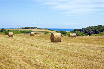 hay bales near the sea