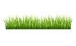 Grass - 65730409