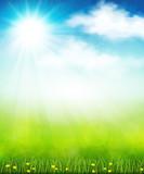 Fototapety Bright summer vector