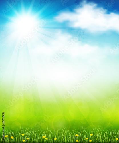 Bright summer vector - 65730418