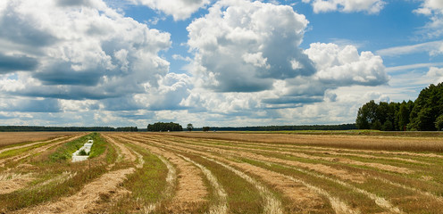 summer landscape with field harvest and large overhanging clouds
