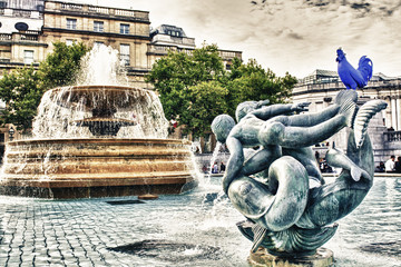 The fountain in Trafalgar Square