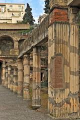 Gli scavi di Ercolano - Napoli