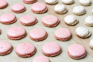 French macarons  in the oven
