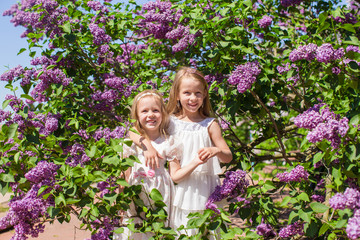 Little adorable girls at beautiful blossoming lilac garden