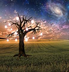 Glowing Bulb Tree Sunset