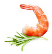 Cooked shrimp isolated .