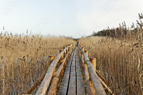 Fototapeta Path on lake surface.