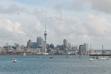 boats in Auckland marina