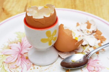 empty egg shell and spoon