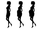 Silhouette of pregnant woman in three trimesters. poster