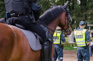 mounted police horse and policeman public event