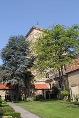 Der Osnabrücker Domgarten