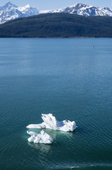 Icebergs Floating Near College Fjord Alaska
