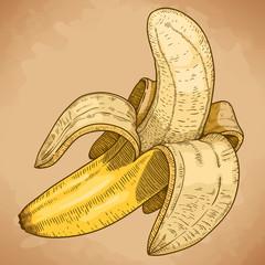 engraving illustration of yellow banana