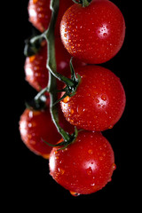 Cherry tomatoes with water drops on black background.