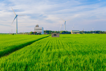 wind turbine in the meadow in taiwan