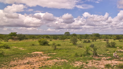 African Savannah Time Lapse Pan