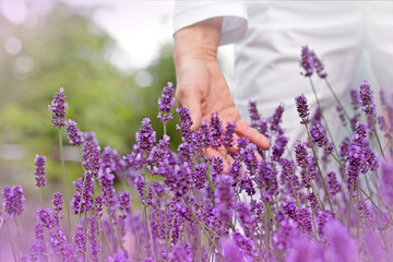 A Woman's hand in lavender