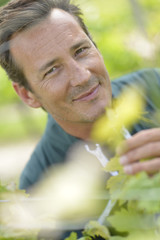 Smiling vinegrower standing in vineyard
