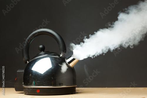 boiling kettle - 65768235