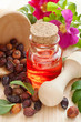 essential oil in glass bottle, dried rose-hip berries and rose h
