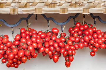 Grappoli di pomodori pachino