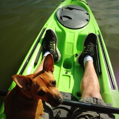 kayaking pup
