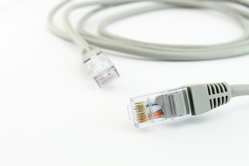 Network cable closeup