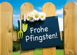 Frohe Pfingsten
