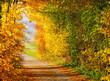 Leinwanddruck Bild - Herbstwanderung