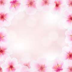 Cherry Flower Frame With Blurred Background