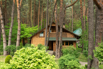 Cozy wooden house in the coniferous forest
