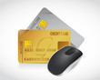mouse and credit cards illustration design