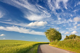 Blauer Himmel mit Wolken über Landschaft mit Rapsfeld - 65783619
