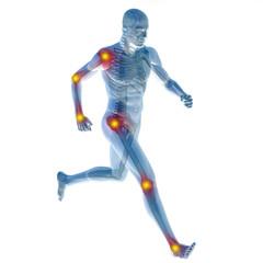 3D human man anatomy with articular pain