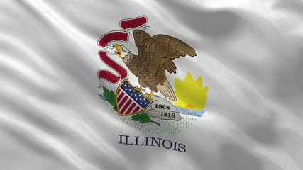 US state flag of Illinois waving in the wind - loop