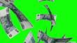 Falling Rubles (Loop on Greenscreen)
