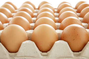 Eggs In A Tray On White Background