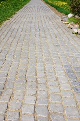 Garden path from pavers