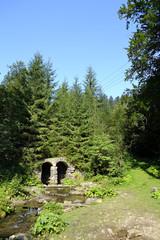 ручей среди леса