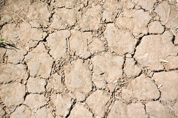 Cracked soil after drought texture background, close up