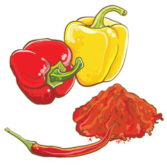 Vector illustration of pepper and chili pepper.