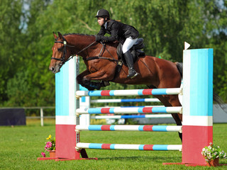 A horse show jumper in mid-air