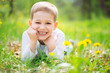 Smiling little boy lying in green grass