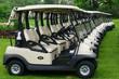 Golf carts - 65807062