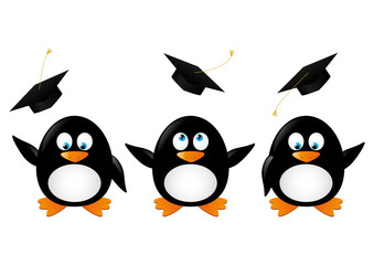 Student penguins isolated on white